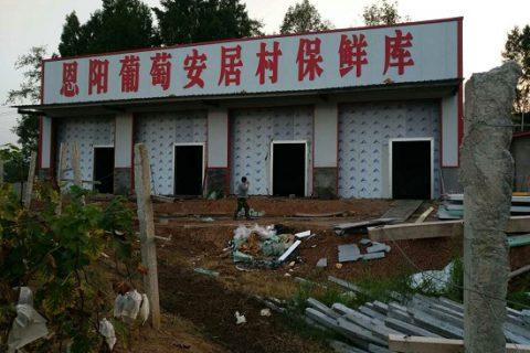 巴中葡萄种植合作社200吨葡萄气调保鲜库工程案例