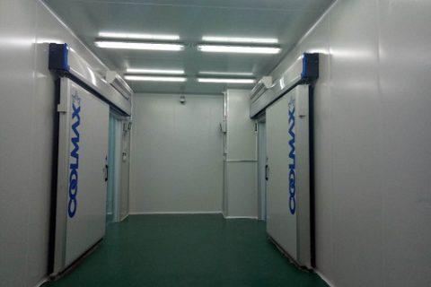 成都博奥晶芯冷藏冷冻库项目工程案例