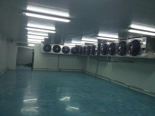 库房内安装的制冷机组
