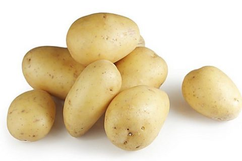 冷库贮藏马铃薯(土豆)注意事项有哪些