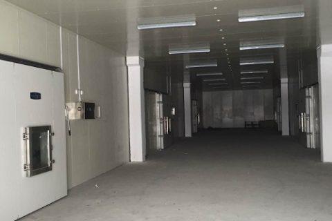 新疆新伟盟6000立方气调保鲜库工程案例