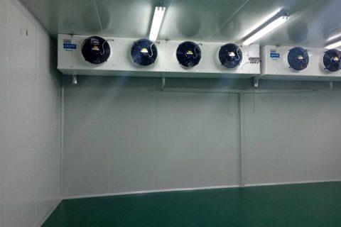 100立方小型冷库建造价格多少