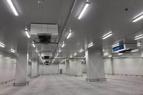 建造一个500吨的高温冷库需要多少钱?