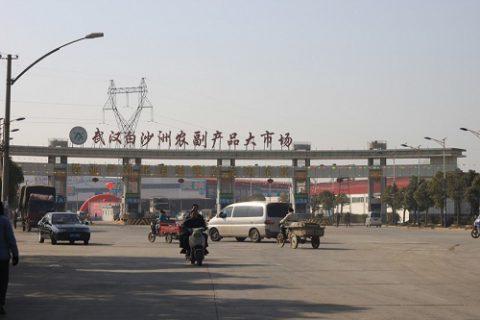 武汉白沙洲农副产品市场3万吨大型低温冷库工程案例