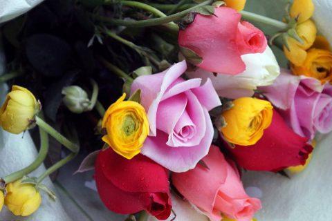 鲜花冷库贮藏保鲜技术 延长鲜花保存时间