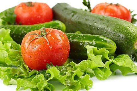蔬菜冷库安装报价及蔬菜冷库特点介绍