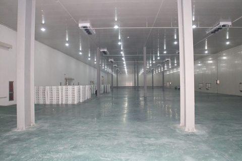 1000平方的冷库建造多少钱