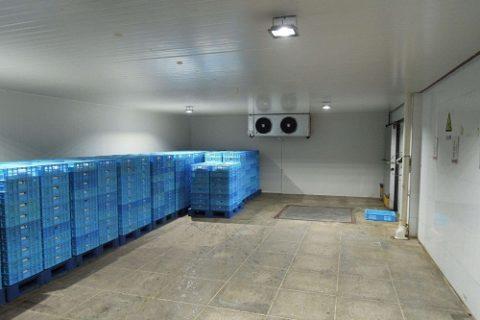 建一个恒温冷库需要多少钱