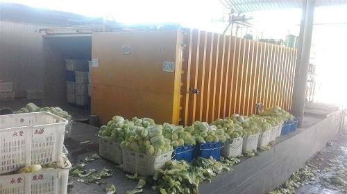 蔬菜真空预冷