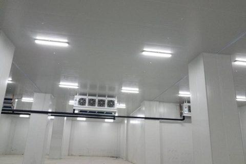 储存2吨多的冻库造价要多少钱?