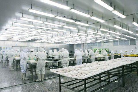 宜宾食品冷库造价表,宜宾300平方冷藏库报价清单参考