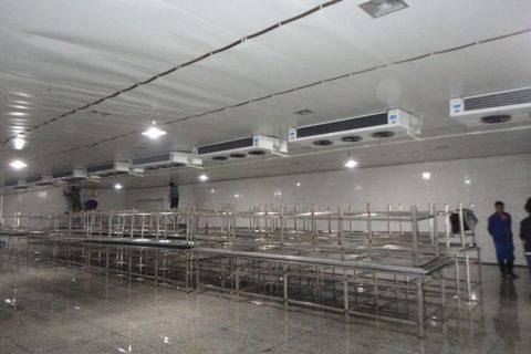100吨水产冷库建造要多少钱?