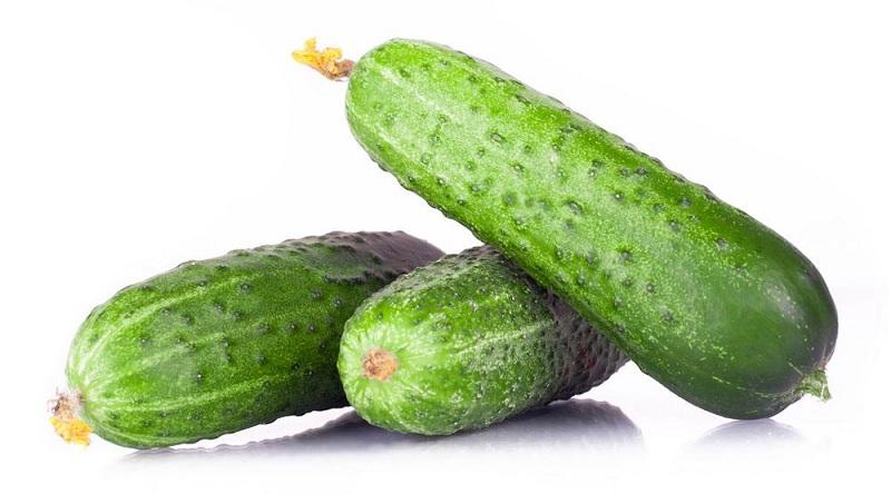 黄瓜怎样长期保存?黄瓜最佳冷库储存方法介绍