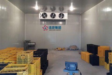 40平米冷库造价成本表,40平方水果保鲜库全套报价清单参考