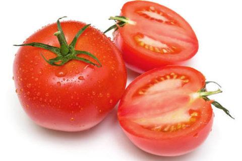 建造20吨西红柿保鲜库成本要多少钱?