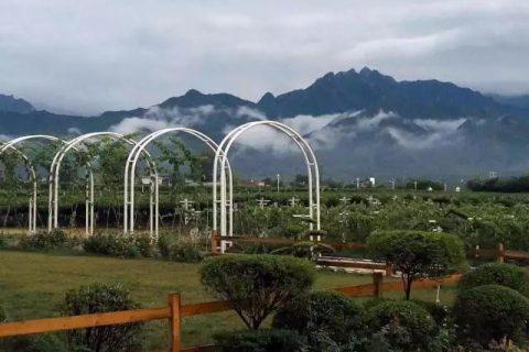 西安太浩庄园200吨葡萄保鲜库工程案例