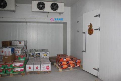 建设一个10吨水果冷库需要多少钱