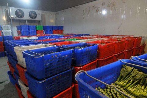 180~200吨蔬菜保鲜冷库造价要多少钱?