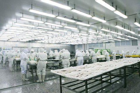 修建一个肉类冷冻库大概多少钱?