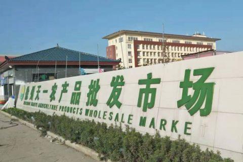 徐州天一水产市场2900平米冷链物流冷库工程建造项目