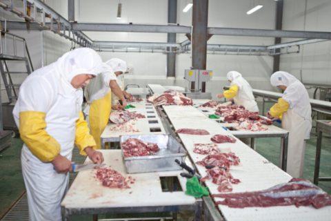 建造一个存货量100吨的猪肉冷库要多少钱?