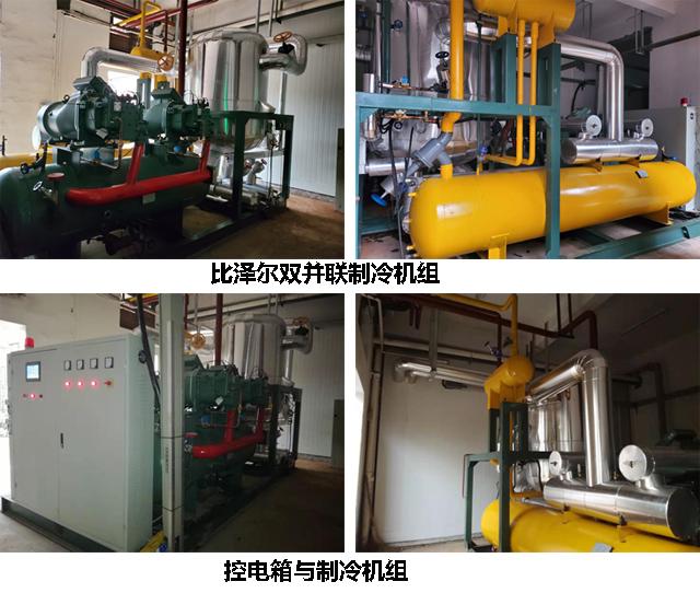 杭州生猪屠宰场白条肉速冻冷库工程项目