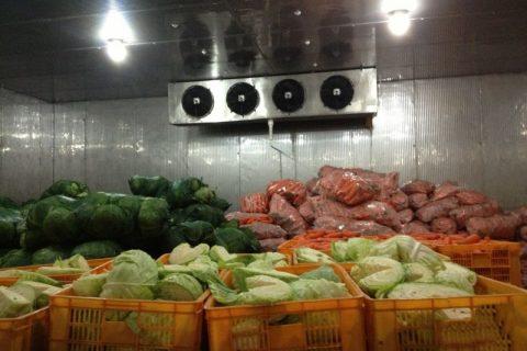 建30吨蔬菜保鲜库造价要多少钱?