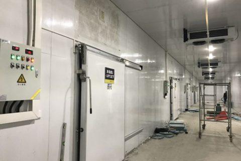 福建福州2000立方米奶茶原料食品冷库工程项目