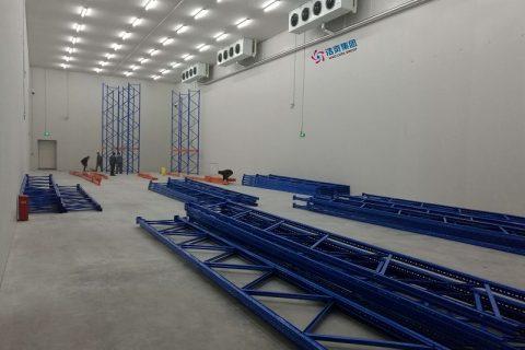建设5000吨保鲜库需要多少钱?