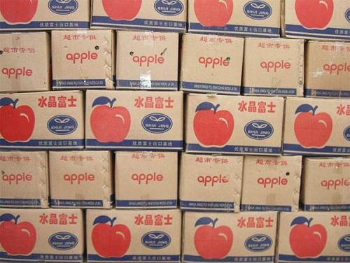 苹果气调保鲜库