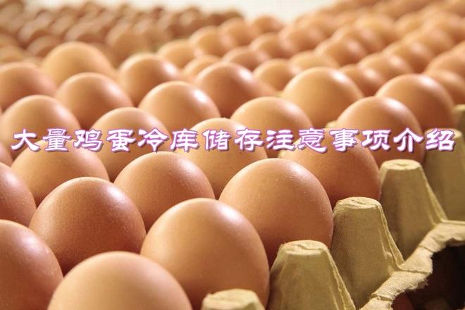 大量鸡蛋和蛋类食品冷库储存注意事项介绍