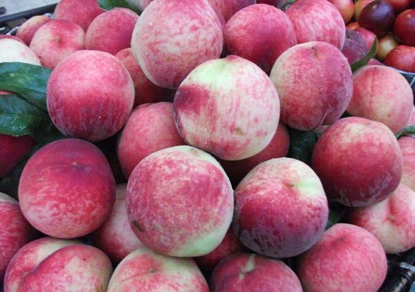 图为冷库贮藏后的桃子