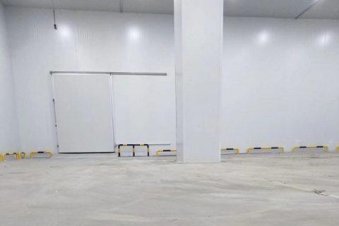 四川九龙尚善科技3200立方米地瓜保鲜冷库工程设计建造方案