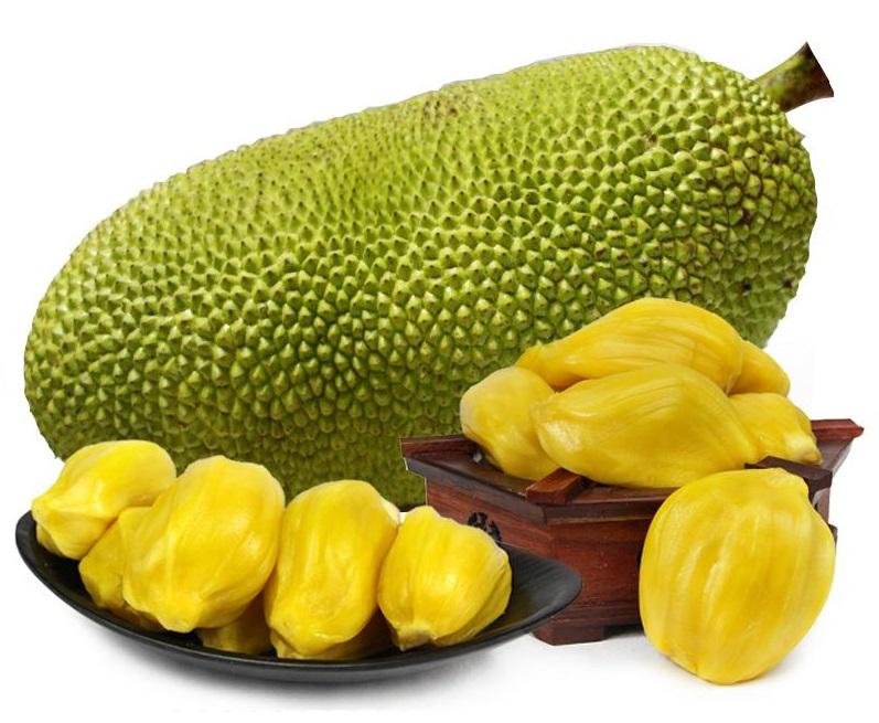菠萝蜜能放冷库储存吗?菠萝蜜冷库保存时间和温度是多少?