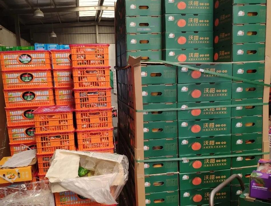 建造600立方水果冷库造价需要多少钱?