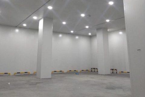 建一个200吨的冷库需要多少钱?
