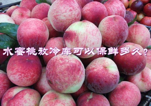水蜜桃放冷库可以保鲜多久?最佳冷库贮藏温度是多少?