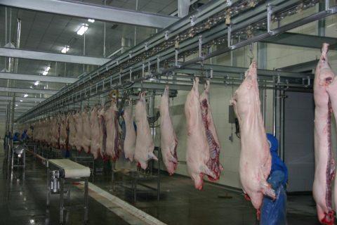 建造猪肉屠宰场冷库价格要多少钱?