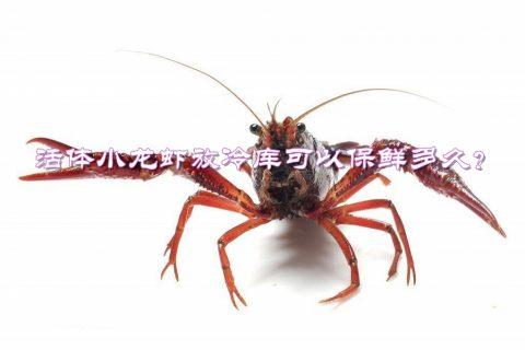 活体龙虾(小龙虾)放冷库可以保鲜多久?最佳冷库贮藏温度是多少?