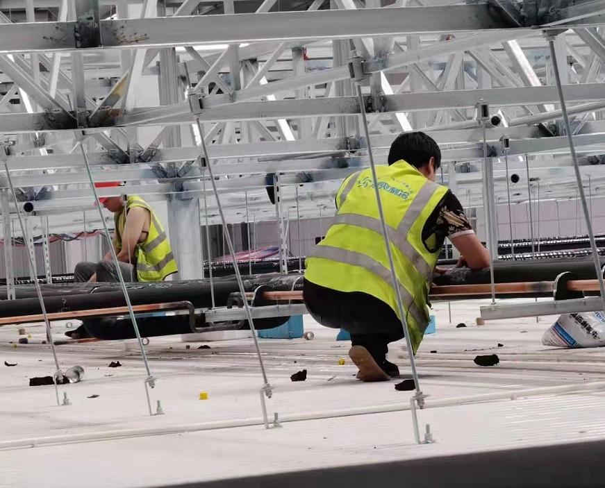 建造500吨的蔬菜保鲜库要多少钱?